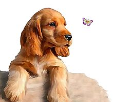 Cocker spaniel puppy & butterfly by Cazzie Cathcart