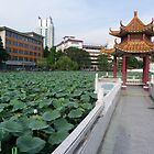Bao Yue Pond by chinalin