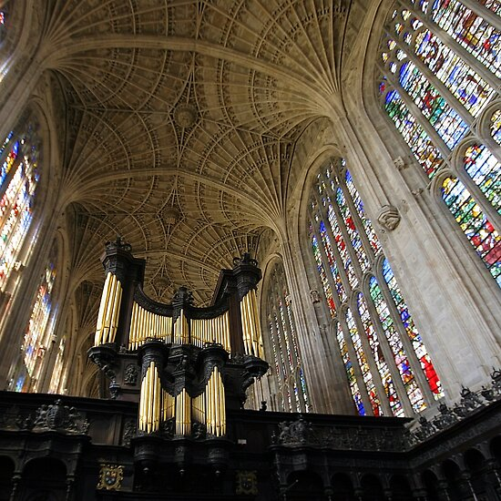 The Kings Organ by John Dalkin