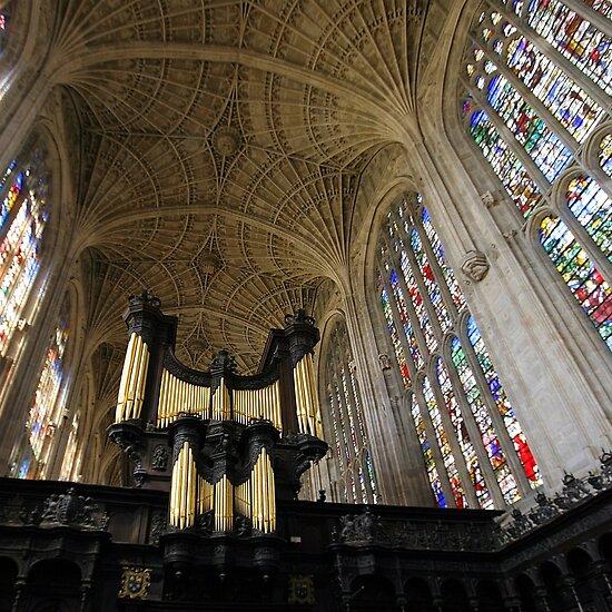 The Kings Organ by John Dalkin