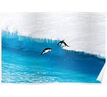 Adelie Penguin  Leap of Faith Poster