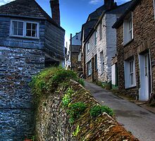 Rose Hill Port Isaac by David Wilkins