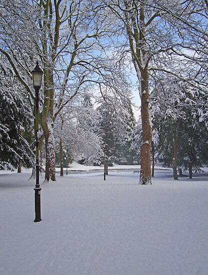 Tranquil snow scene by NKSharp