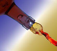 Bottle Art 3 by Brian Dodd