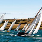 Stella Leads the Fleet by GBR309