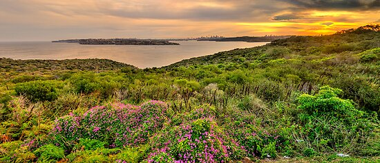 Sydney Harbour Welcome - North Head (40 Exposure HDR Panorama) - The HDR Experience by Philip Johnson