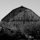Papa Barn and Baby Shed !!! by Larry Llewellyn