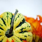 Gourd by Sunshinesmile83