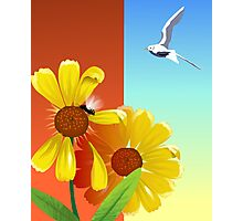 Pigeon attracted towards the beauty of the flower Photographic Print