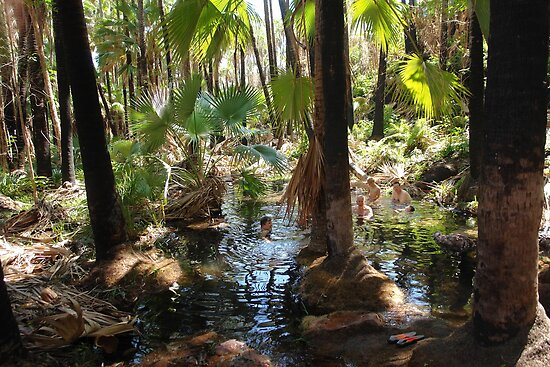 Zebedee Springs in  El Questro by georgieboy98
