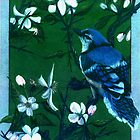 Bluejay in the Apple Tree by Jedro