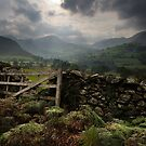 Newlands View - Cumbria - UK by Ian Snowdon /     www.downtoearthimages.co.uk