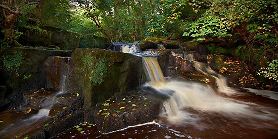 Hareshaw Burn by outwest photography.co.uk