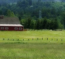 Peacful Feel Of The Country by Terrie Taylor