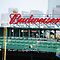 Budweiser Sign Fenway Park, Boston MA by Rebecca Bryson