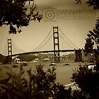 SF bridge by Danny Kern