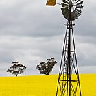 Country Windmill by KathyT