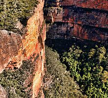 Jagged Edge  - The Rugged Blue Mountains by jayneeldred