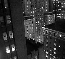 Concrete Jungle, NYC by Sandy Taylor