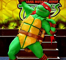 Teenage Mutant Ninja Turtles by Raoul Isidro