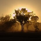 Dust and Dusk by lateralconcepts