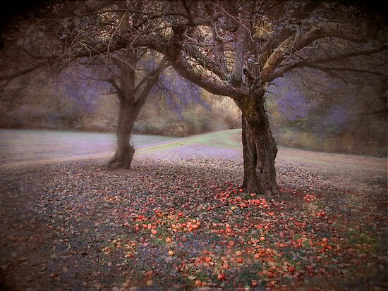 fallen fruit by dawne polis
