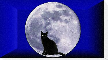 Cat and the moon by Elenne Boothe