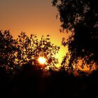 Sunset Sky by PurpleDonna