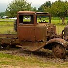 Old Truck by Robin  Koster