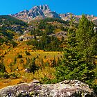 Tetons in the Fall by Luann wilslef