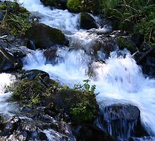 Rushing Water at Lower Latourell Falls by Pam2t1968