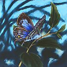 Blue butterfly by maria paterson