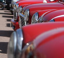 Minis on the Brighton seafront by ThatsAndy