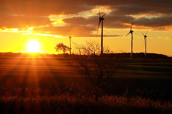 Windmill Sunrise by Steve Small