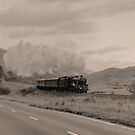 Highland Steam by Hertsman