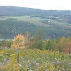 Changing Seasons Fall Bare Hill, Canandaigua, NY by Glasseye74