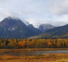 Autumn in the mountains (panoramic) by zumi