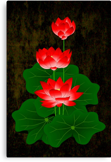 Red Lotus by myrbpix