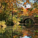 Gulpha Gorge Bridge by Lisa G. Putman