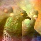 Pigeons...an impression. by inkedsandra