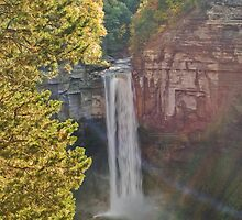 Taughannock Falls - The Overlook by KathleenRinker