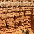 Hoodoo Line: Bryce Canyon  by Dawn Crouse
