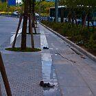 Cinderella avenue by vesa50