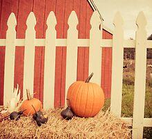 Pumpkin Time by O. Joy