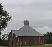 Odd-Shaped Red Barn by Gina Ryan