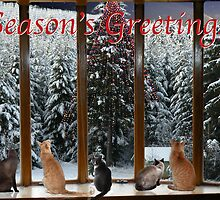 Christmas card with Cats #3 by Odille Esmonde-Morgan