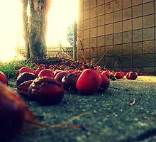 Tombox Cherry Tree by SarahMistake