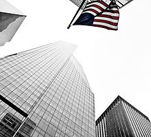 New York City 2010 by RonSparks