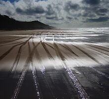Sand Highway by DianaC