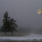 Moon through the Fog... by Larry Llewellyn